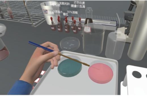 XR软件 感知VR虚拟实训教学软件-食品微生物检测实训软件